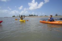 IMG_kayaks