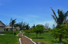 Bungalows View