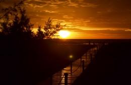 Sunrise ZBLS 1
