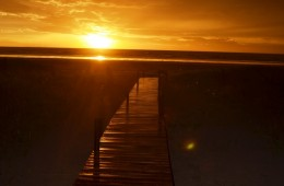 Walk to the Sunrise