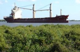 The port of Quelimane