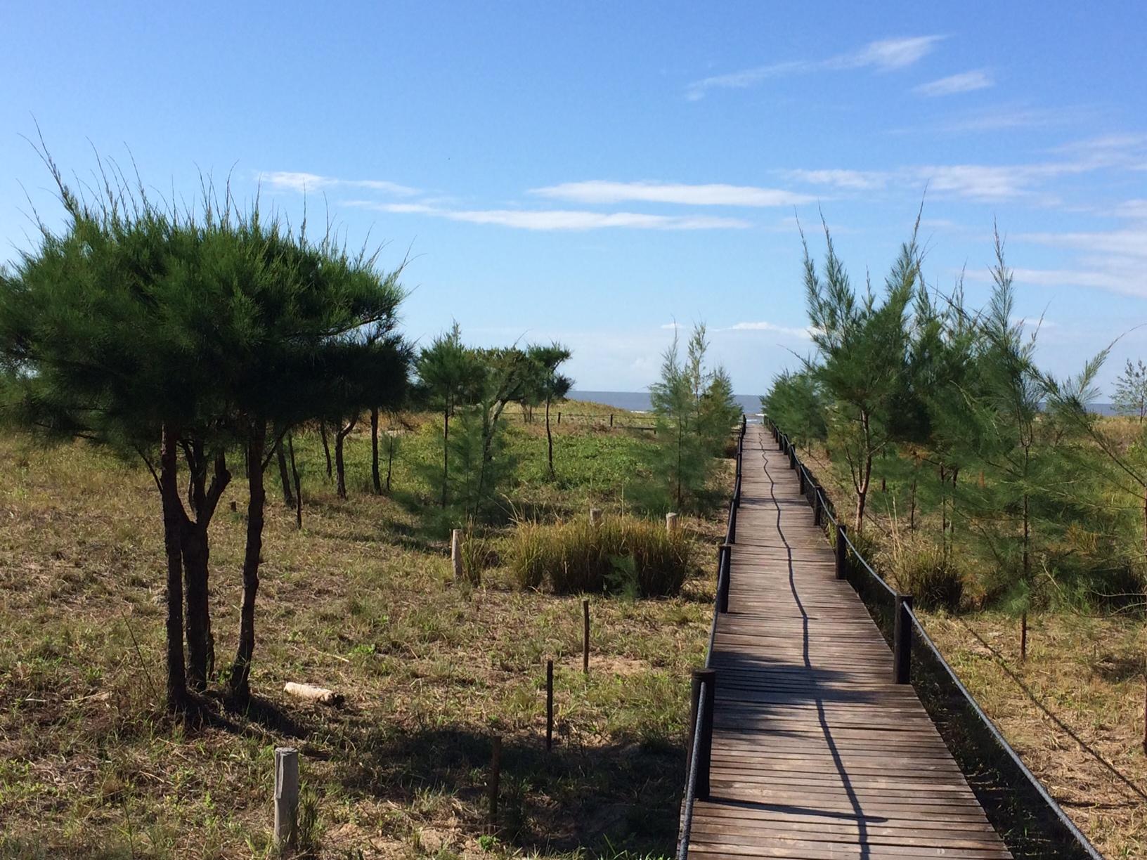 The beach pathway