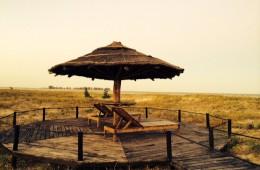 Beach umbrella 2